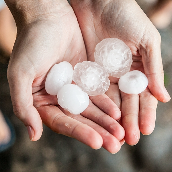 What should you do when your home is damaged by hail?