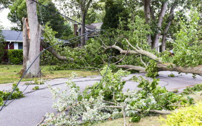 What should you look for in an attorney after the storm?